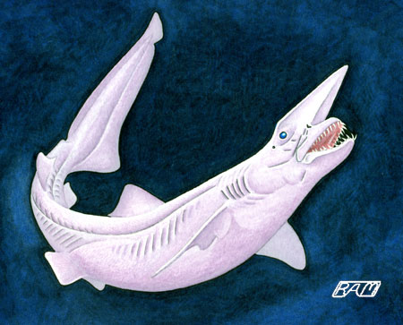 Deep Sea: Goblin Shark